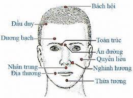 Tác dụng của một số huyệt vị trên khuôn mặt.